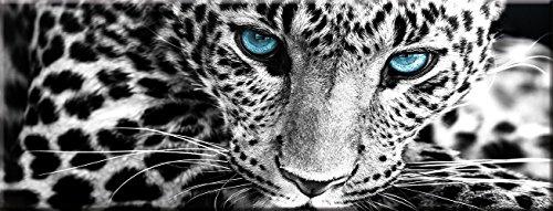 artissimo, Glasbild, 80x30cm, AG1951A, In The Jungle, Leopard, schwarz-weiß, Bild aus Glas, Moderne Wanddekoration aus Glas, Wandbild Wohnzimmer modern