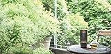 Yamaha LSX-70 – Designobjekt und Bluetooth-Lautsprecher in einem - 4