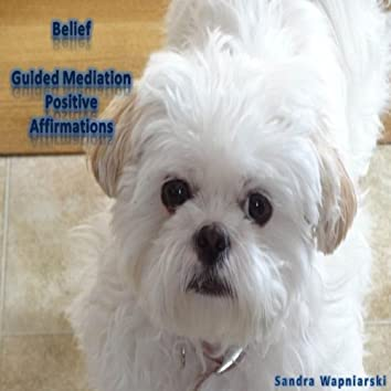 Belief - Guided Meditation - Positive Affirmations