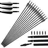 "Tongtu 12pcs 31"" Archery Fiberglass Arrows Hunting Target Arrows with Replacement Screw in"