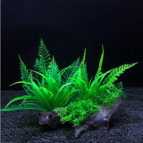 Dulau 2 Pièces Plantes Artificielles pour Aquarium en Plastique, Accessoire de Décoration D'aquarium, Décoration Aquatique Simulation D'aquarium Plantes Hydroponiques
