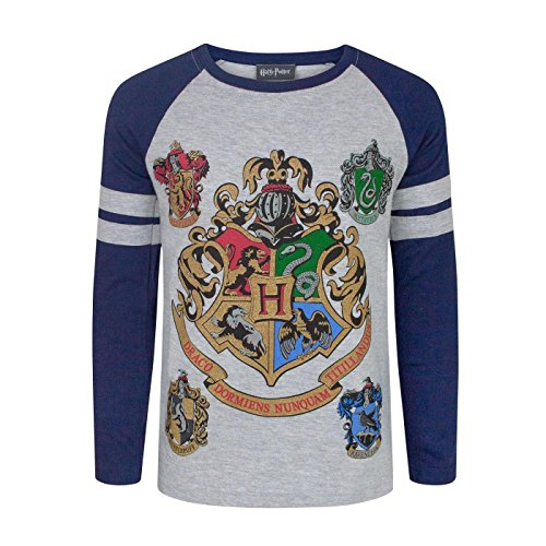 Harry Potter Hogwarts Boy's Raglan T-Shirt (9-10 Years)