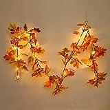 PovKeever 観葉植物 紅葉 楓の葉 紅葉の季節 メープルリーフ 藤 造花 壁掛け 葉 飾り size 1.5 m (ランプ付き)
