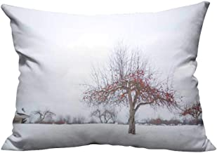 YouXianHome Zippered Pillow Covers The Plum Blossom Tree in The Winter Snow Decorative Couch(Double-Sided Printing) 12x16 inch