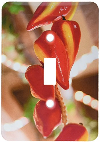 3dRose lsp_52089_1 Ceramic Red Hot Chili Peppers Strung on String and Hanging on From a Ceiling in a Mexican Restaurant Light Switch Cover