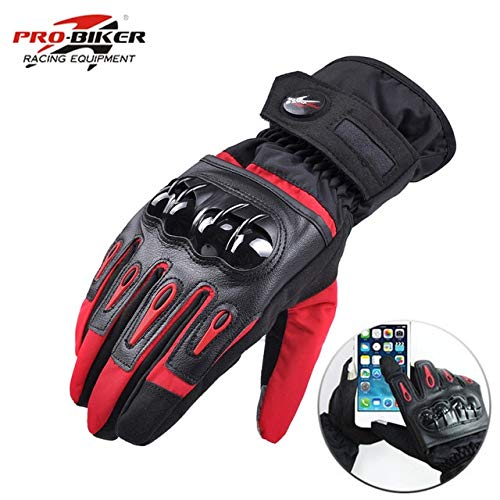 Bruce Dillon Motorcycle Gloves Racing Waterproof Windproof Winter warm Leather Bicycle Cold Motorcycle Gloves - 1 X L