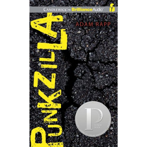 Punkzilla audiobook cover art