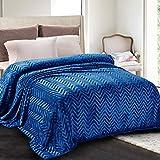 Whale Flotilla Flannel Fleece Queen Size(90x90 Inch) Lightweight Bed Blanket, Soft Velvet Bedspread Plush Fluffy Coverlet Chevron Design Decorative Blanket for All Seasons, Royal Blue