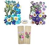 Juego de 4 paquetes de flores prensadas reales, incluye 2 marcapáginas de madera y 2 flores secas, materiales para hacer arte y manualidades
