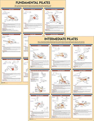 Kinetics, H: Pilates Anatomy Poster Series