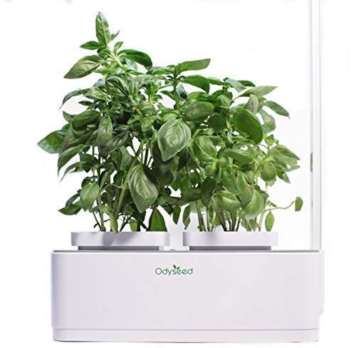 Odyseed Gemüsegarten für den Innenbereich | Vielzahl Organischer und Europäischer Ursprungssamen | Automatische Bewässerungs- und Beleuchtungstechnik | Umweltfreundlich biologisch | 40 x 14 x 37 cm