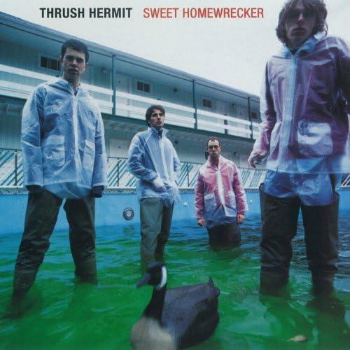 Thrush Hermit