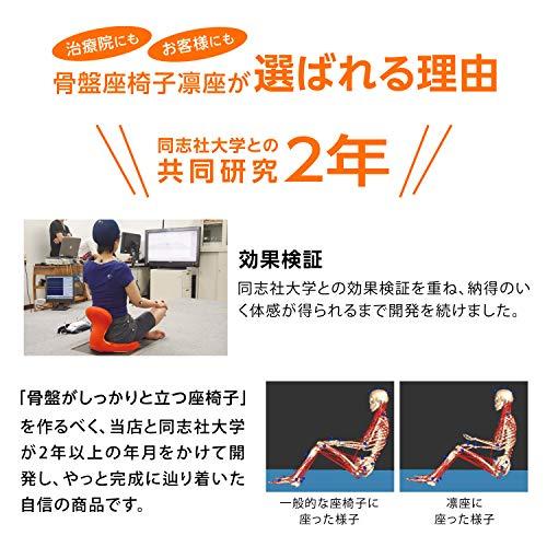 PROIDEA(プロイデア)『骨盤座椅子凛座』