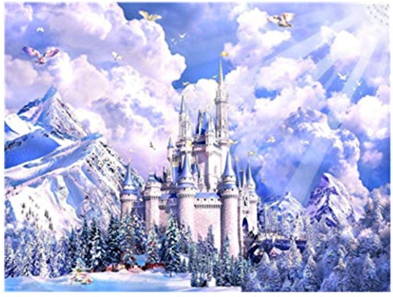 Agolong DIY Malen Nach Zahlen Schnee Schnee Schnee Landschaft Acrylgemälde Moderne Bild Home Decor Für Wohnzimmer Mit Rahmen 40x50cm B07LFDRS34 | Preiszugeständnisse  b52949