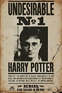 Harry Potter - Movie Poster (Wanted: Undesirable No. 1 - Harry Potter) (Size: 24 inches x 36 inches)