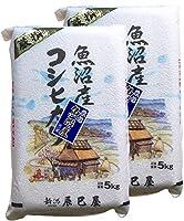 【精米】新潟県北魚沼産 令和2年(産地直送 広瀬・守門産)白米 コシヒカリ 10kg(5kg×2袋)