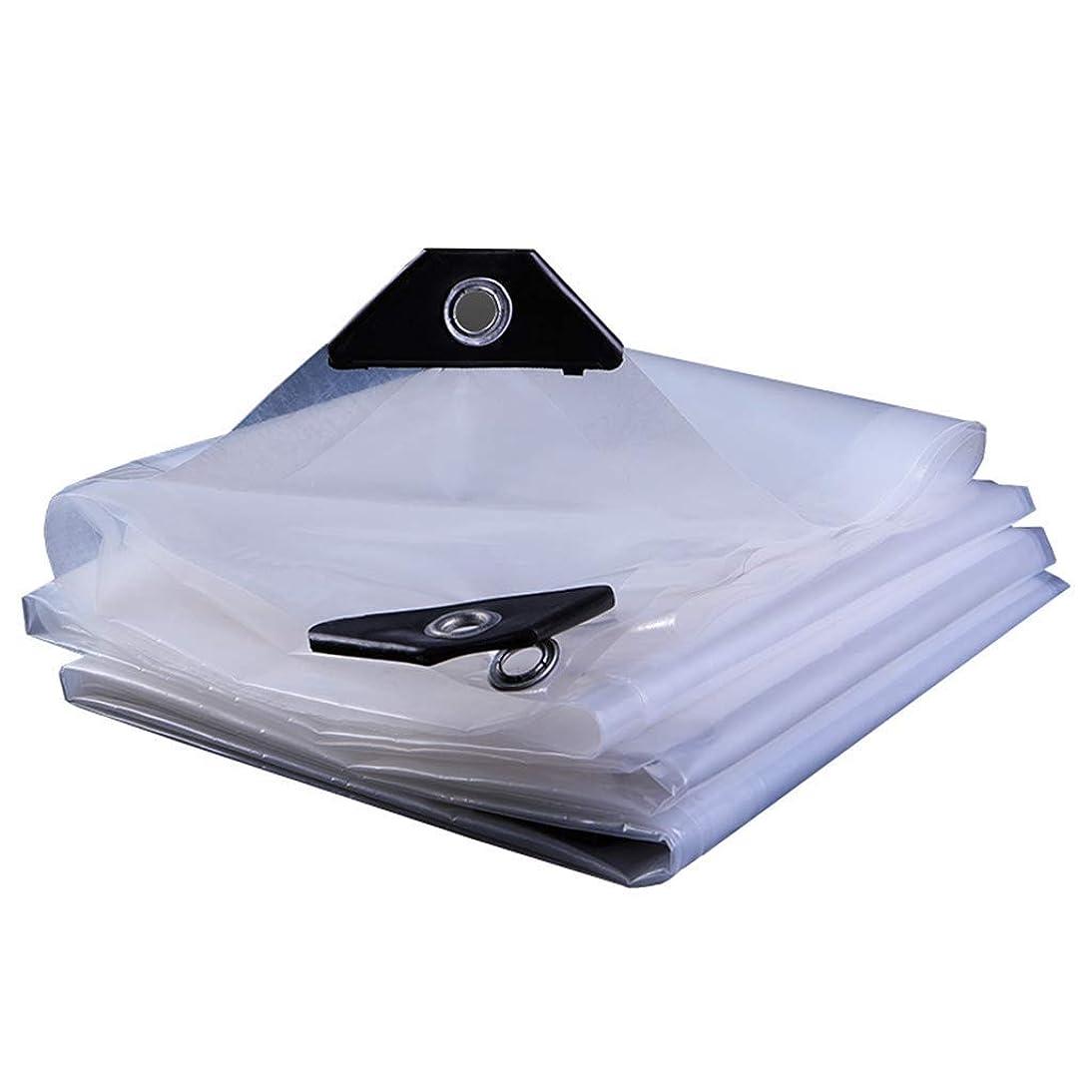 行商人効果万一に備えてタープ 明確な防水シート屋外の100%防水透明な防水シートの頑丈なカバーのプラスチック布の建物の塵が付いている塵/ペンキ/汚れ/雨シート、厚さ0.12mm、100g / mの2 (サイズ さいず : 4x5m)