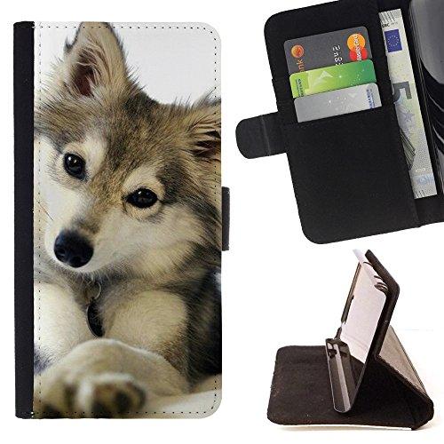 XP-Tech / Flip Funda Carcasa PU de Cuero para Samsung Galaxy J3 Pro - Cute Puppy Wolf Snow Winter Pet Canine