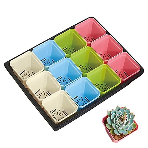Plastik Farbige Blumentöpfe, 24Pcs...