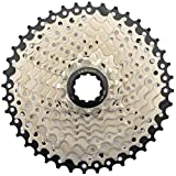 LANXUANR 10 Speed Mountain Bicycle Cassette Fit for MTB Bike, Road Bicycle,Super Light (11-40T)