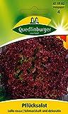 Quedlinburger Légumes