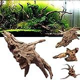 F.lashes Decor-Wurzel -Mangrove Scaper Root Mangrovenwurzel für Aquarien und Terrarien