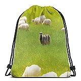 Hangdachang Ovejas Negras Entre Cabras Blancas En Campo De Hierba Prado Animal Granja Paisaje, Cierre Ajustable Cordón Impreso Mochilas Bolsas