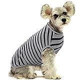 Ropa para Mascotas, Camisetas para Mascotas, Ropa para Perros, Camisetas de Algodón a Rayas para Perro, Camiseta Transpirable y Elástica para Perros Pequeños, Extra Pequeños y Medianos (Negro XXL)