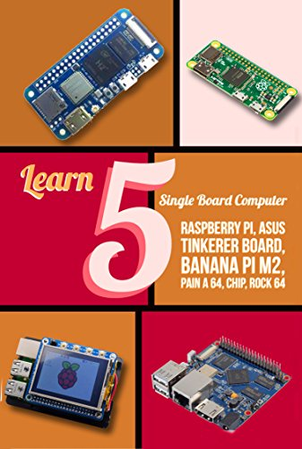Learn 5 Single Board Computer: Rapberry, Asus Tinkerer Board, Banana PI M2, Pine A 64, Chip, Rock 64 (English Edition)