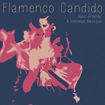 Flamenco Candido