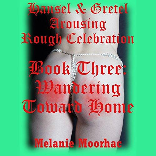 Wandering Toward Home audiobook cover art
