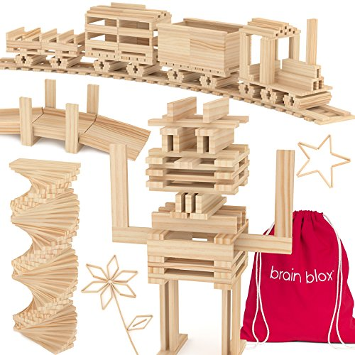 Brain Blox Wooden Building Blocks for Kids - Building Planks Set  STEM Toy for Boys and Girls (300 Pieces)