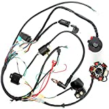 DesirePath Quad Wire Harness, CDI Wire Harness Assembly Wiring Set For 50cc 70cc 90cc 110cc 125cc Chinese ATV Electric Stator CDI Coil ATV Quad Bike Buggy Go Kart