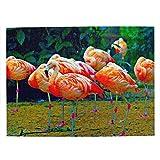 Flamencos de Brasil Rompecabezas para Adultos, 500 Piezas de Madera, Regalo de Viaje, Recuerdo, 20.4 x 15 Pulgadas