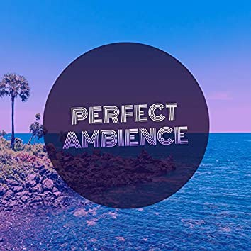 Perfect Ambience, Vol. 6