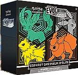 Pokemon Coffret Dresseur d'Élite-Epée & Bouclier-Evolution Céleste (EB07) société-Jeu de Cartes à Collectionner (Modèle aléatoire), POKELIEB07, Multicolore