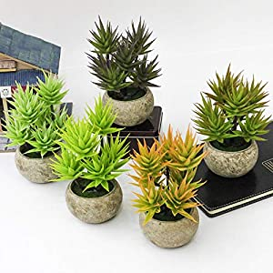 LTJX Mini Fake Succulent Plants Artificial Succulent Plants Set of 5 Artificial Plastic Succulents Potted for Home Office Table Decoration