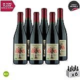 Beaumes de Venise Cuvée Hespéria Rouge 2018 - Bio - Maison Pascal - Vin AOC Rouge de la Vallée du Rhône - Cépages Syrah, Grenache - Lot de 6x75cl
