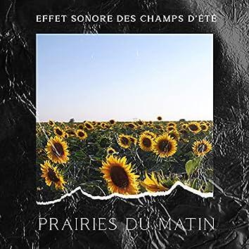 Effet sonore des champs d'été: Prairies du matin, Connectez-vous avec la nature, Exercices de soulagement du stress, Musique de méditation de la nature pour une énergie positive