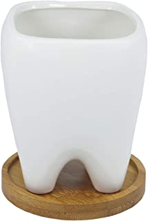 Gemseek Cute Tooth Succulent Planter Pot with Bamboo Drainage Tray, White Ceramic Cactus/Flower Container, Desktop Bonsai Holder for Indoor Home Decor