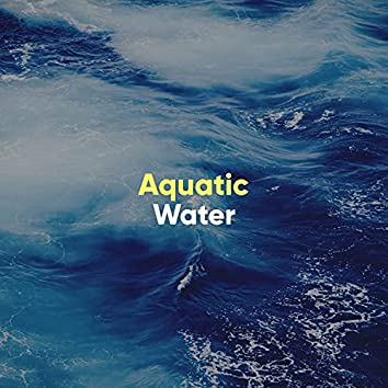 Aquatic Water Music Therapy