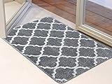 Famibay Indoor Door Mat Non Slip Doormat Machine Washable Entrance Rug Low-Profile Absorbent Resist Dirt Trapper Door Mat for Front Back Door Entryway Hallway Outdoor (Grey, 50x80cm)