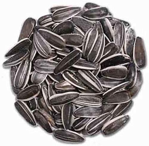 stripe sunflower seeds for birds - 4
