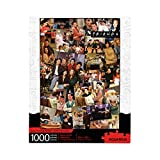 AQUARIUS Friends Collage Puzzle (1000 Piece Jigsaw Puzzle) - Officially Licensed Friends TV Show Merchandise & Collectibles - Glare Free - Precision Fit - Virtually No Puzzle Dust - 20 x 28 Inches