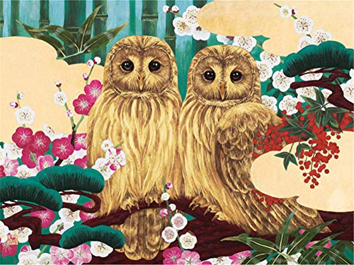 DIY 5D Diamond Painting Kits Full Drill,Crystal Rhinestone Cross Stitch Diamond Painting Adults/Kids Mosaic Pictures Embroidery Art Craft for Home Wall Decor(Owl 30x40cm/12x16in Square Drill)