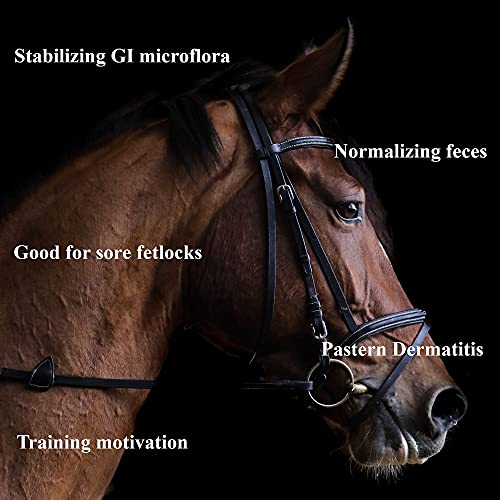 ImproWin for horses Powder to improve gut health, digestion and sore fetlocks/pastern dermatitis. Norwegian science formula with natural salts of organic acids.