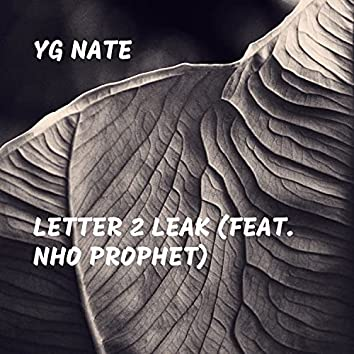 Letter 2 Leak