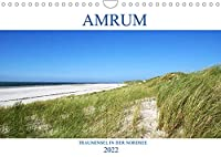 Amrum - Trauminsel in der Nordsee (Wandkalender 2022 DIN A4 quer): Erleben Sie die Trauminsel Amrum mit einem der breitesten Straende Europas (Monatskalender, 14 Seiten )