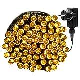 Yasolote 13M Guirnalda de Luces de Navidad 100 LED con Adaptador para Decorar Hogar, Patio, Terraza, Tienda, Fiesta, Halloween, Navidad, Árbol de Navidad (Blanco Calido)