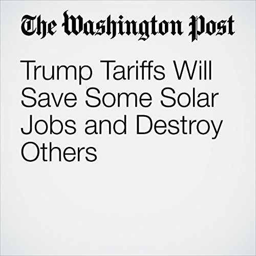 Trump Tariffs Will Save Some Solar Jobs and Destroy Others copertina